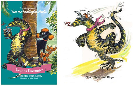 Book and Print package - Goanna Encounter