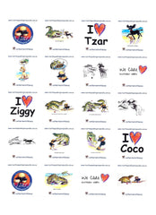 STICKERS - from the Crocodile Encounter Collection