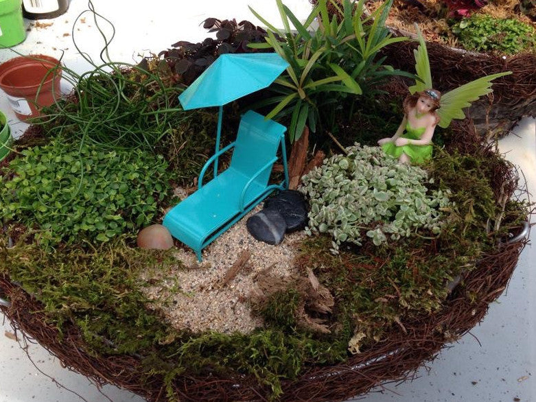 Workshop - Miniature Fairy Garden