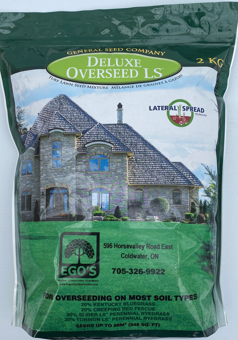Grass Seed - Deluxe Overseed Mix