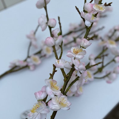 Spring Picks - Plum Blossom Spray