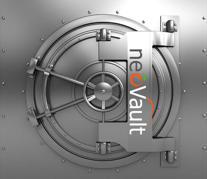 NeoVault Offshore Backup Solution