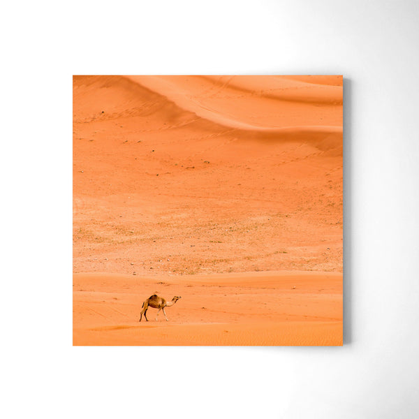 Alone In The Desert - Art Prints by Post Collective - 2