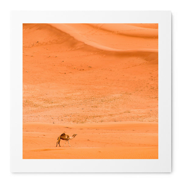 Alone In The Desert - Art Prints by Post Collective - 1