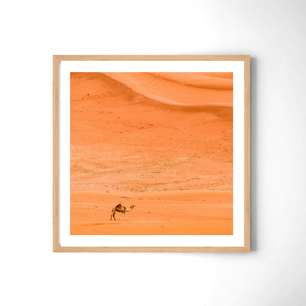 Alone In The Desert - Art Prints by Post Collective - 3