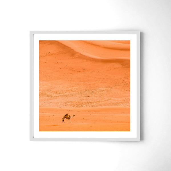 Alone In The Desert - Art Prints by Post Collective - 4