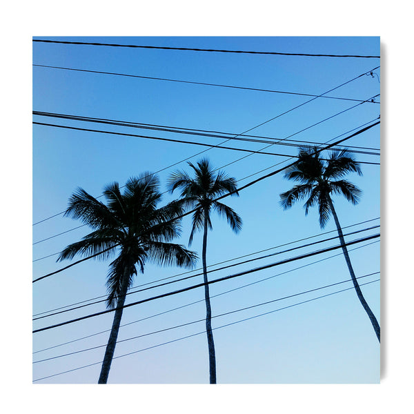 Electrical Palm Lines - Art Prints by Post Collective - 1