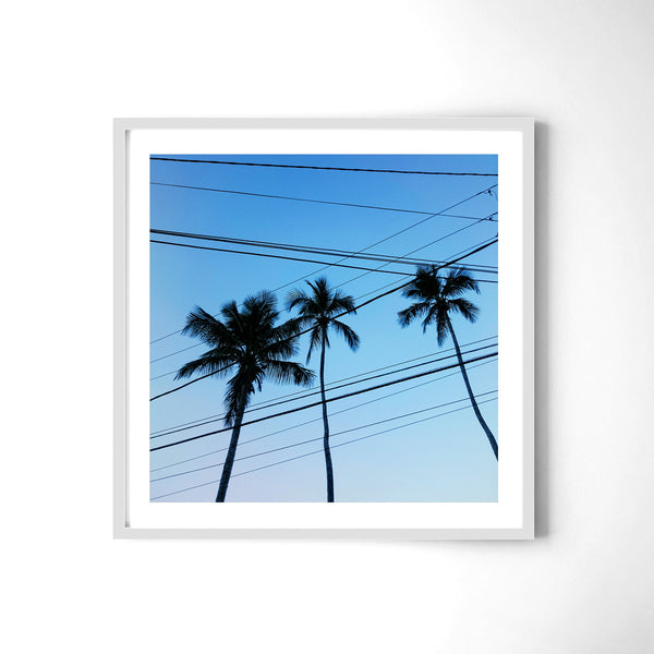 Electrical Palm Lines - Art Prints by Post Collective - 4