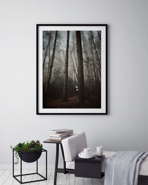 Fairytale Forest - Art Prints by Post Collective - 5