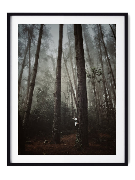 Fairytale Forest - Art Prints by Post Collective - 1