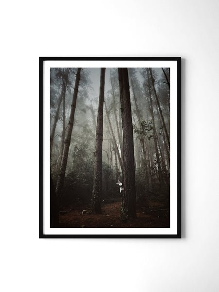 Fairytale Forest - Art Prints by Post Collective - 2