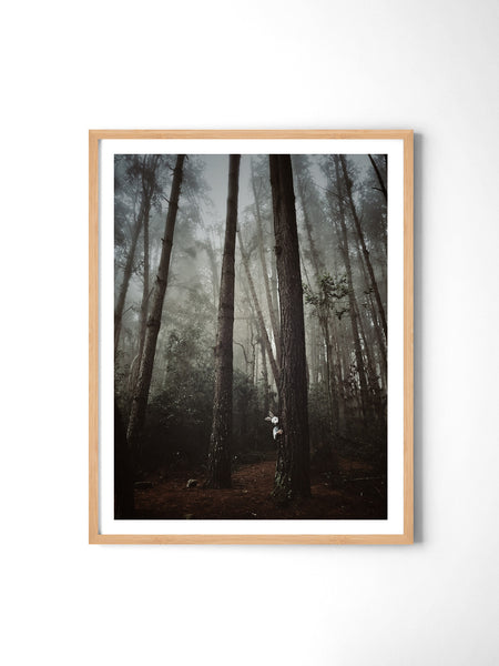 Fairytale Forest - Art Prints by Post Collective - 3
