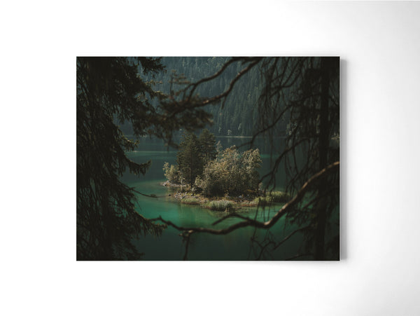 Framed By Nature - Art Prints by Post Collective - 2
