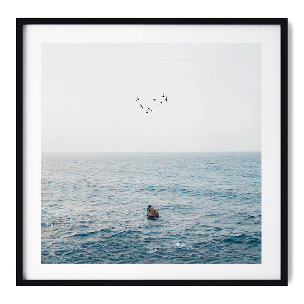 Freedom - Art Prints by Post Collective - 1