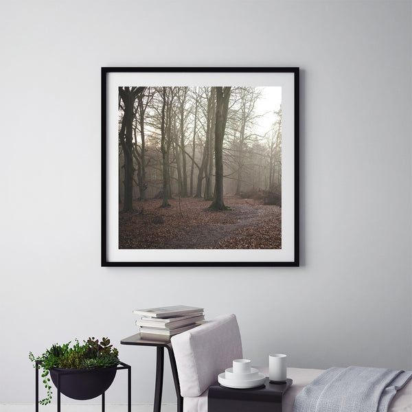 German Forest - Art Prints by Post Collective - 5