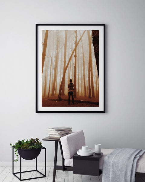Golden Haze Forest - Art Prints by Post Collective - 5