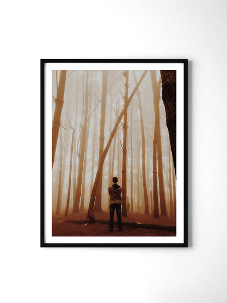 Golden Haze Forest - Art Prints by Post Collective - 2