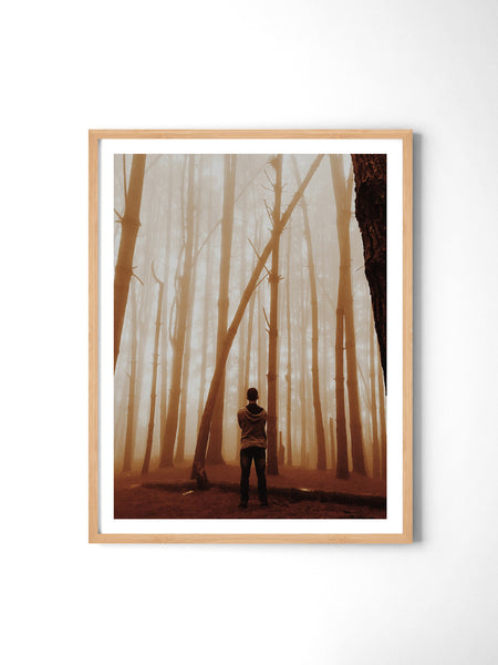 Golden Haze Forest - Art Prints by Post Collective - 3