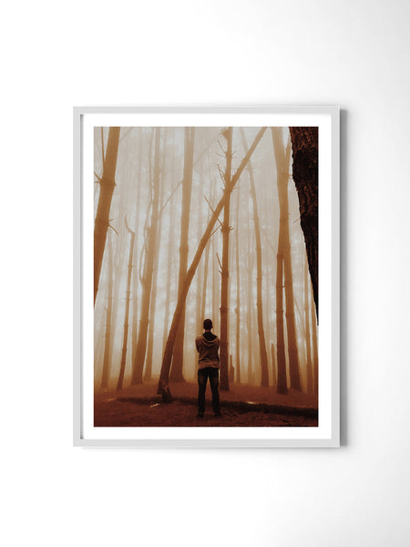 Golden Haze Forest - Art Prints by Post Collective - 4