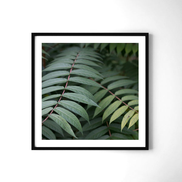 Green Love - Art Prints by Post Collective - 2
