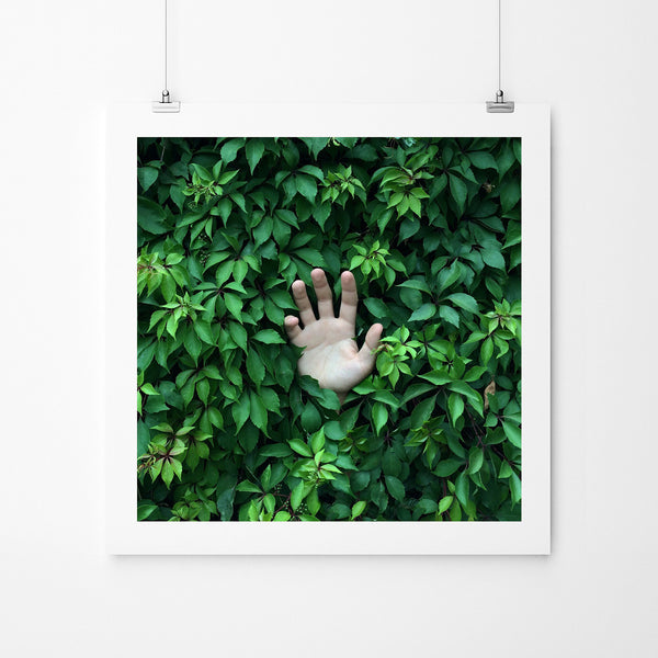 Green - Art Prints by Post Collective - 2