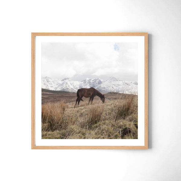 Horse In The Cuillins - Art Prints by Post Collective - 3