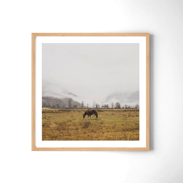Horse - Art Prints by Post Collective - 3