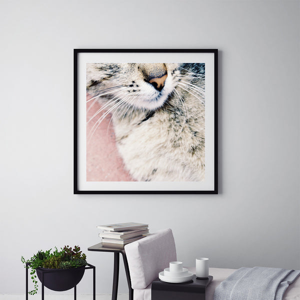 Kitty - Art Prints by Post Collective - 5