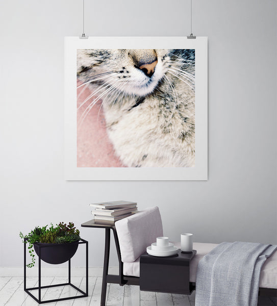 Kitty - Art Prints by Post Collective - 3