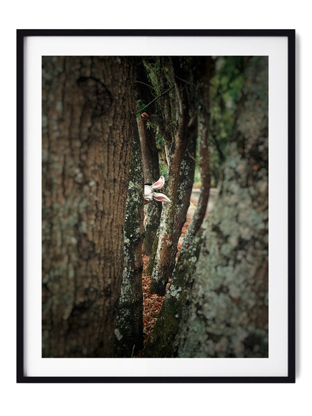 Let's Play Hide And Seek - Art Prints by Post Collective - 1