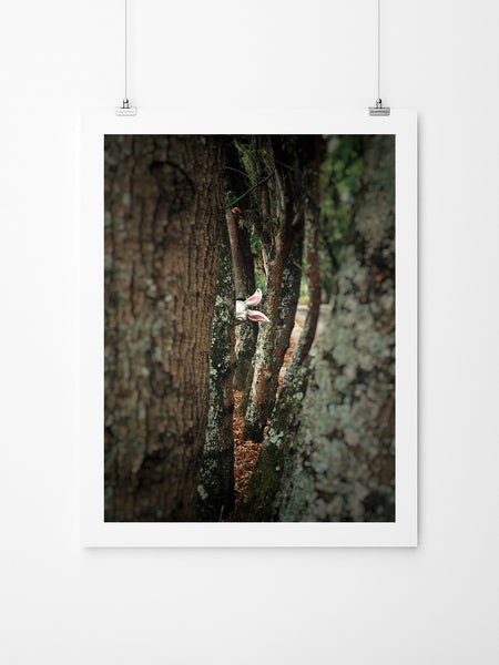 Let's Play Hide And Seek - Art Prints by Post Collective - 2