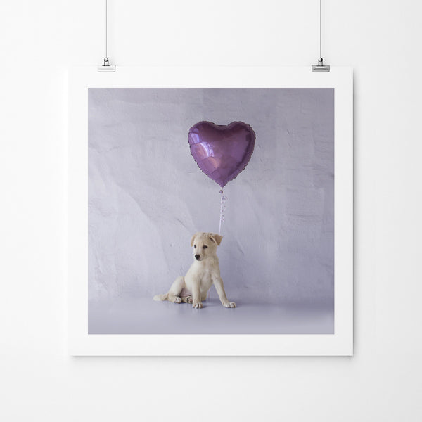 Lilac And Fur - Art Prints by Post Collective - 2