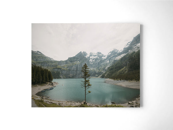 Lone Tree - Art Prints by Post Collective - 2