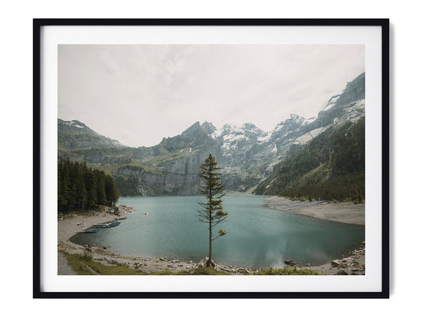 Lone Tree - Art Prints by Post Collective - 1