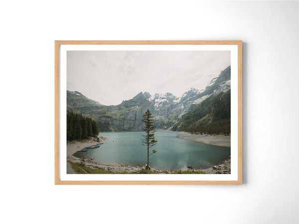 Lone Tree - Art Prints by Post Collective - 3