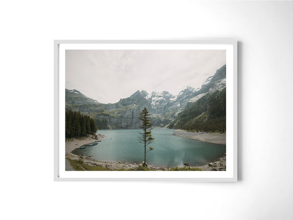 Lone Tree - Art Prints by Post Collective - 4