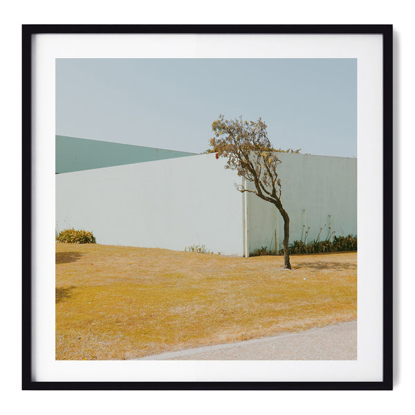 Lonely Tree - Art Prints by Post Collective - 1