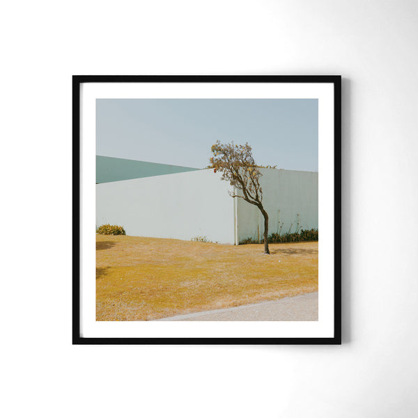 Lonely Tree - Art Prints by Post Collective - 2