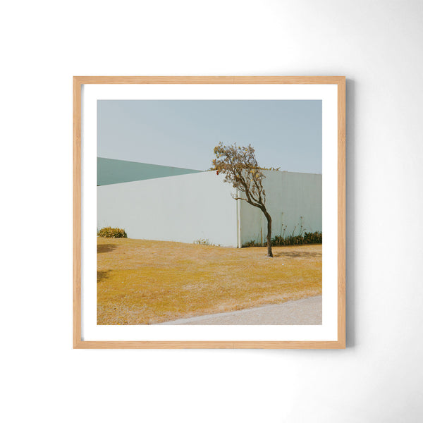 Lonely Tree - Art Prints by Post Collective - 3