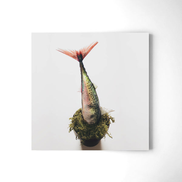 Out of Place II - Art Prints by Post Collective - 2