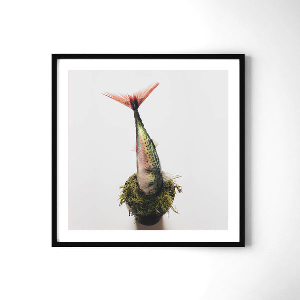 Out of Place - Art Prints by Post Collective - 2