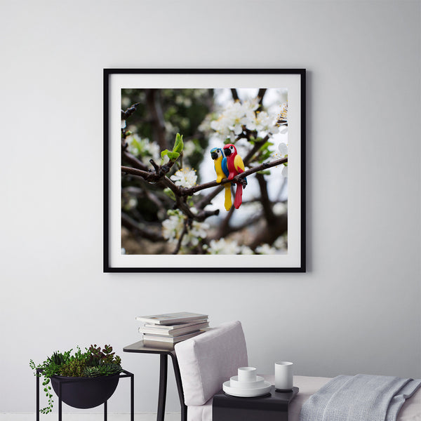 Parrots - Art Prints by Post Collective - 5