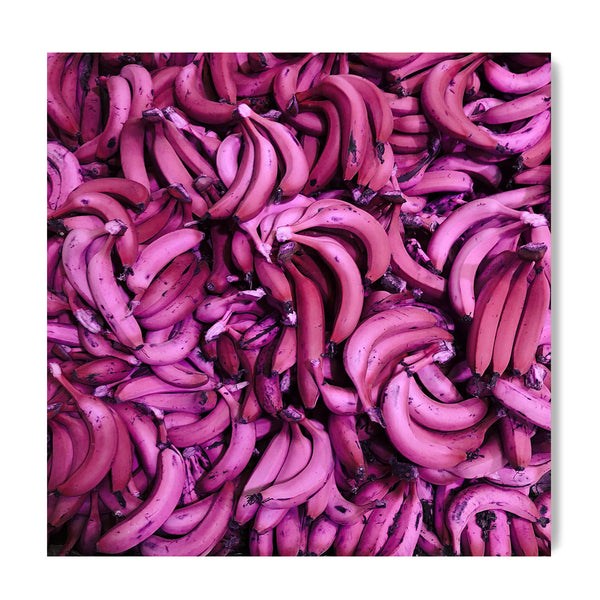 Pink Banana - Art Prints by Post Collective - 1