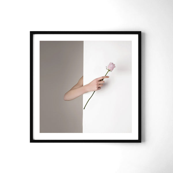 Pink Rose - Art Prints by Post Collective - 2
