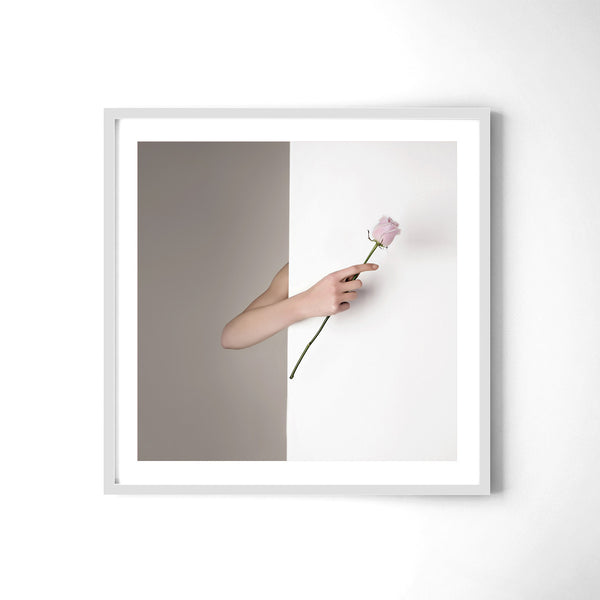 Pink Rose - Art Prints by Post Collective - 4