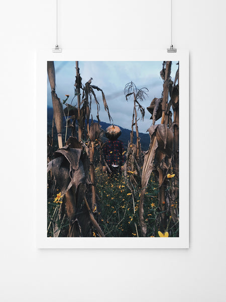 Pumpkin Head - Art Prints by Post Collective - 2