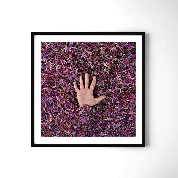 Purple - Art Prints by Post Collective - 2