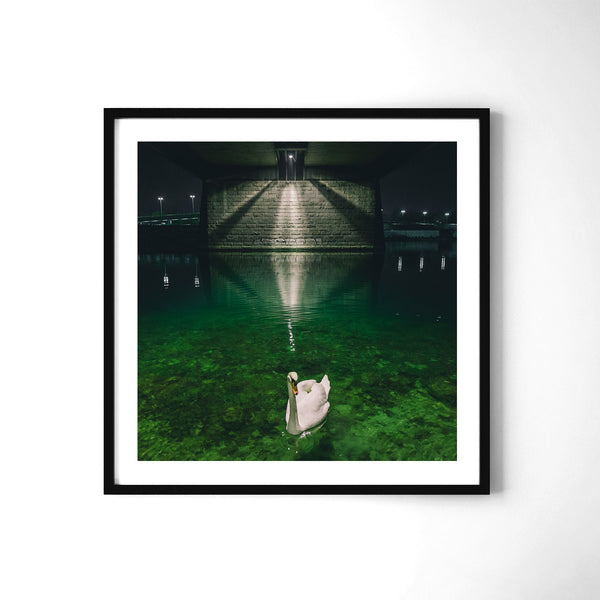 Reveller - Art Prints by Post Collective - 2