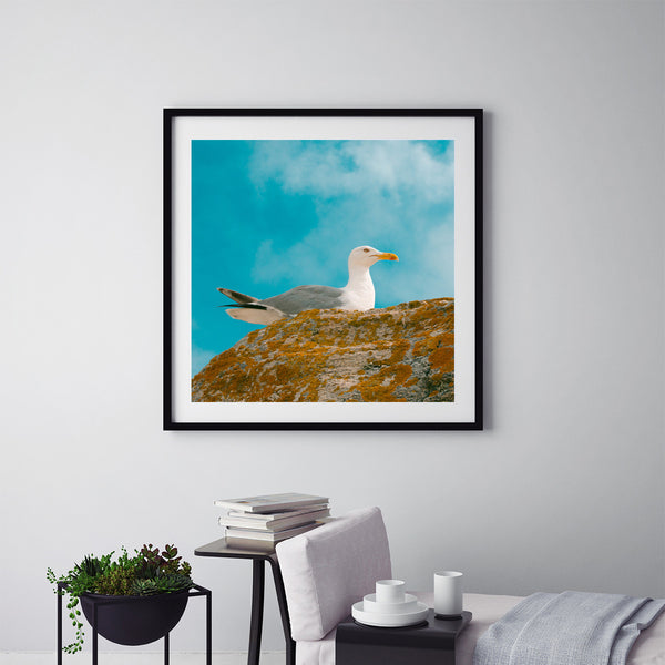 Seagull In Colours - Art Prints by Post Collective - 5