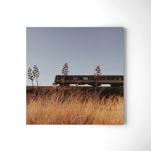 South Coast Railroad Line - Art Prints by Post Collective - 2